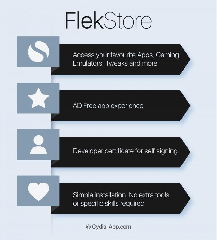 flekstore-infographic
